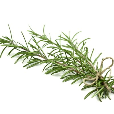 ROSEMARY TEA LEAF