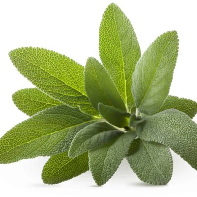 SAGE EXTRACT